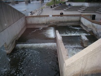 A photo of Fish Ladder Park