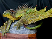 Photo of Spike-Backed River Dragon